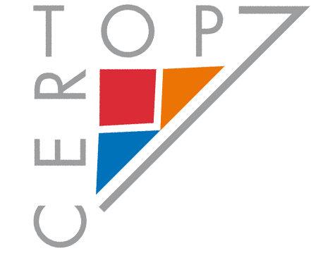 Le Séminaire du CERTOP 2009-2010