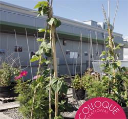 Actes du Colloque «Agricultures urbaines durables : Vecteur pour la transition écologique» 2017