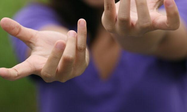 Innovation – PEPS : Penser l'activité humaine pour penser la capture de gestes – Projet de pré-maturation intersciences (informatique, ergonomie) financé par la Région Occitanie